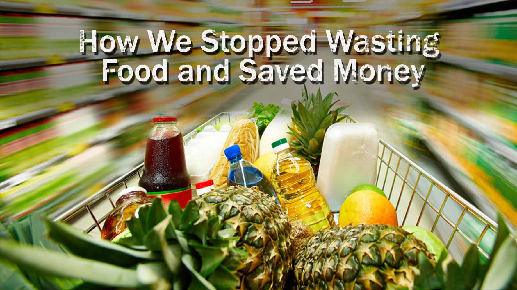 Stop Wasting Food And Money