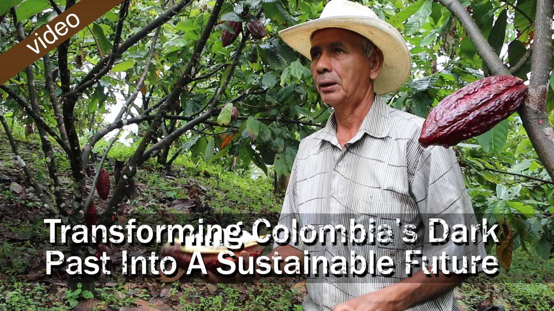 Transforming Colombia's Dark Past Into A Sustainable Future Feature Image