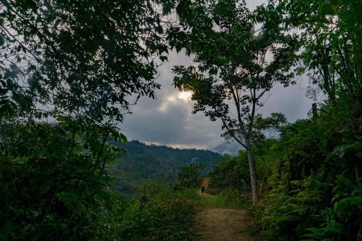 Lost City Trek Colombia