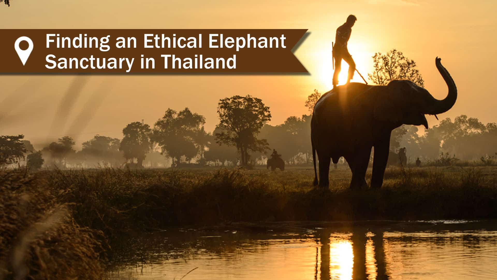 Finding An Ethical Elephant Sanctuary In Thailand