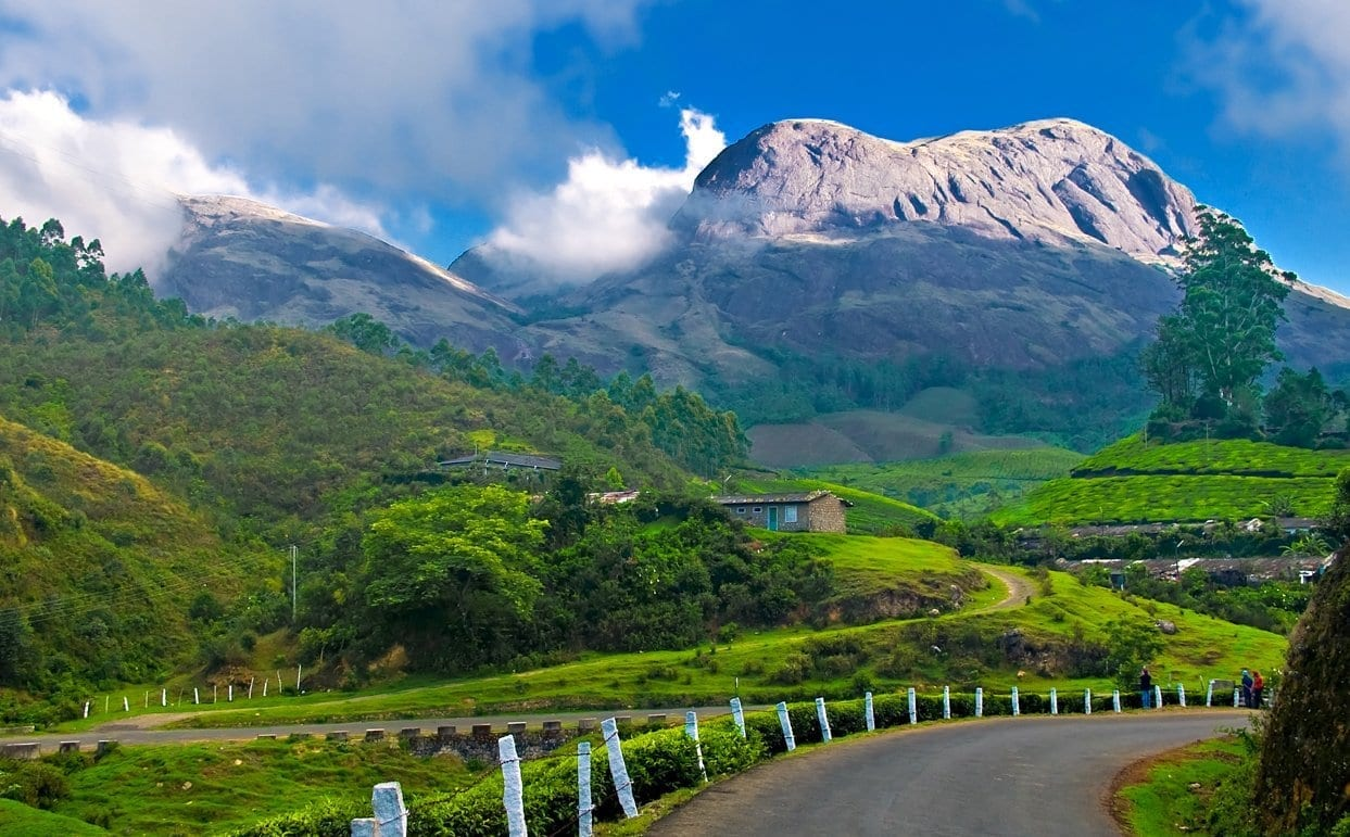 Picture of Munnar - One of the Best places to visit in Kerala