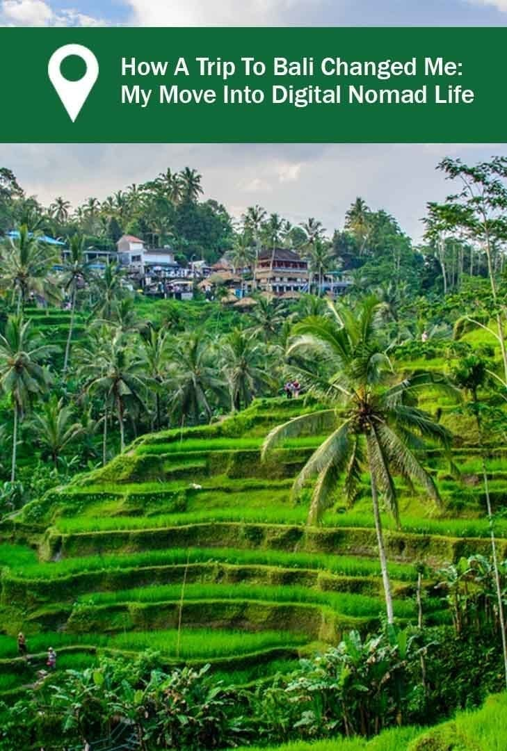 the bali rice fields - why Bali is the perfect place to start a nomad life